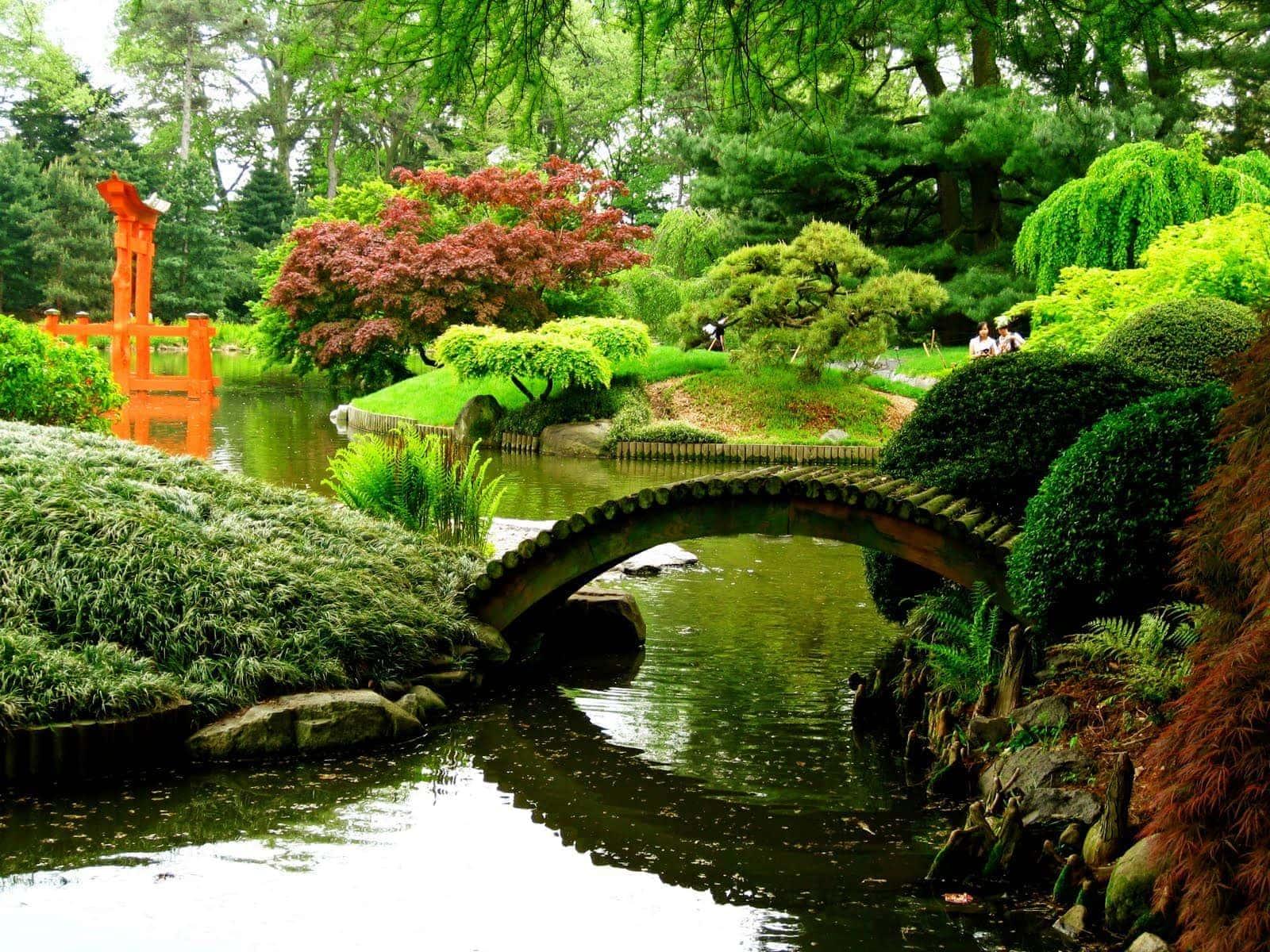 Brooklyn-Botanic-Gardens-New-York